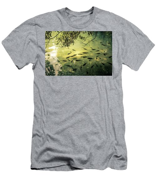 Golden Pond With Fish Men's T-Shirt (Athletic Fit)