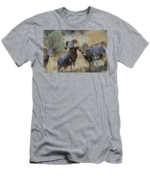 Got An Itch... Men's T-Shirt (Slim Fit) by Steve Warnstaff