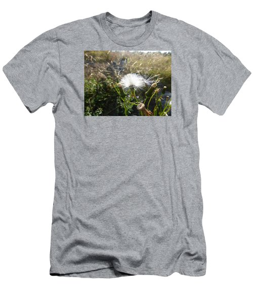 Men's T-Shirt (Slim Fit) featuring the photograph Grand Manan Dandelion  by Joel Deutsch