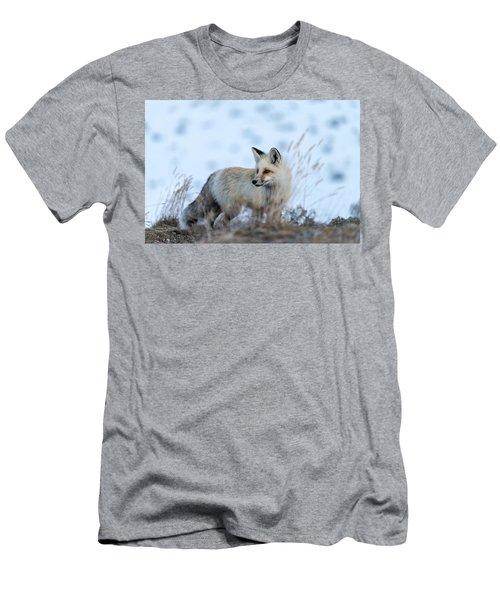 Grand Teton Fox Men's T-Shirt (Athletic Fit)