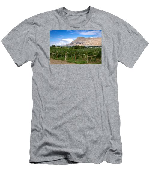 Grand Valley Vineyards Men's T-Shirt (Athletic Fit)