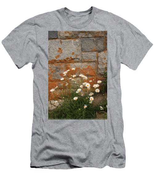 Granite Daisies Men's T-Shirt (Athletic Fit)