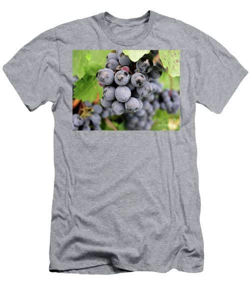 Grapes On The Vine Men's T-Shirt (Athletic Fit)
