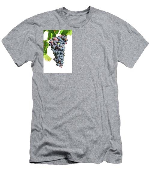 Grapes On Vine Men's T-Shirt (Athletic Fit)