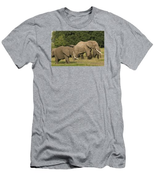 Men's T-Shirt (Slim Fit) featuring the photograph Grazing Elephants by Gary Hall