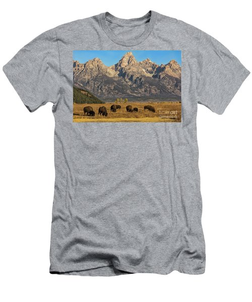 Grazing Under The Tetons Wildlife Art By Kaylyn Franks Men's T-Shirt (Athletic Fit)