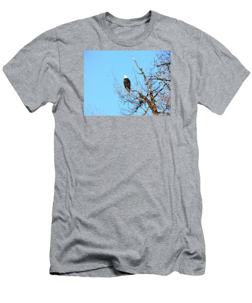 Great American Bald Eagle Men's T-Shirt (Athletic Fit)