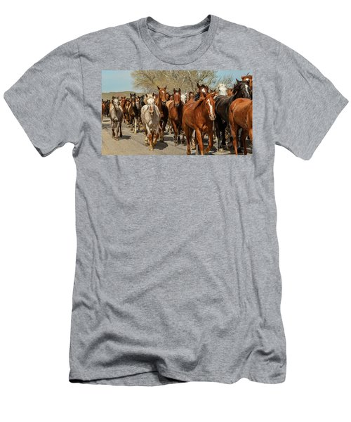 Men's T-Shirt (Athletic Fit) featuring the photograph Great American Horse Drive by Brenda Jacobs