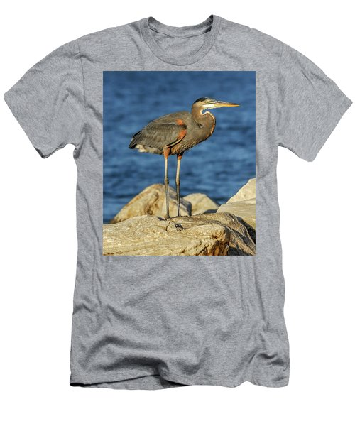 Great Blue Heron On Rock Men's T-Shirt (Athletic Fit)