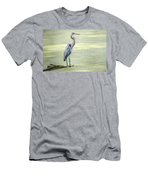 Great Blue Heron Standing In A Marsh Men's T-Shirt (Athletic Fit)