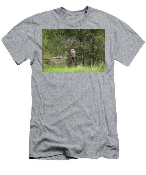 Greathornedowl2 Men's T-Shirt (Athletic Fit)