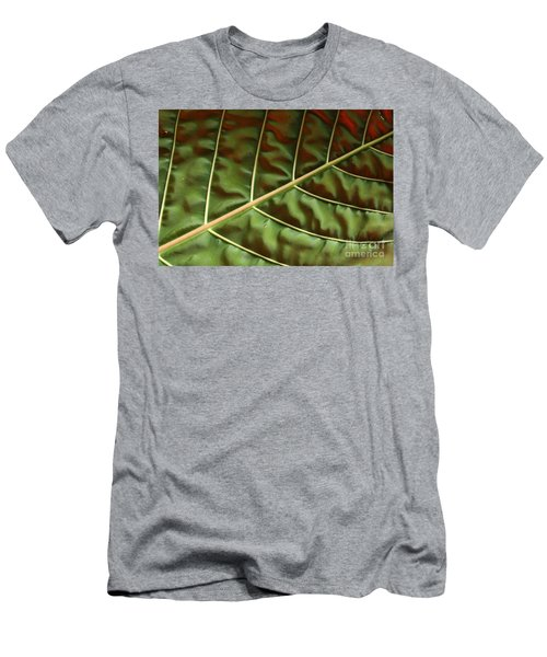 Green And Red Leaf Silky Dunes 1 Men's T-Shirt (Athletic Fit)
