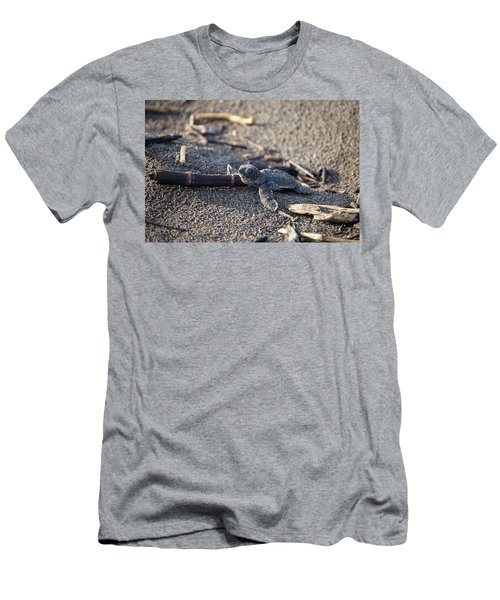 Green Sea Turtle Hatchling Men's T-Shirt (Slim Fit) by Breck Bartholomew