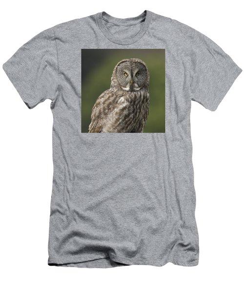 Great Gray Owl Portrait Men's T-Shirt (Slim Fit) by Doug Herr