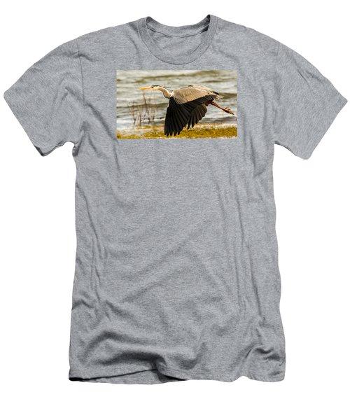 Grey Heron In Flight Men's T-Shirt (Athletic Fit)