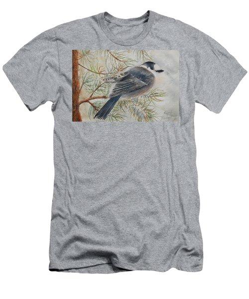 Grey Jay Men's T-Shirt (Athletic Fit)