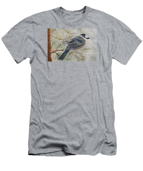 Grey Jay Men's T-Shirt (Athletic Fit)
