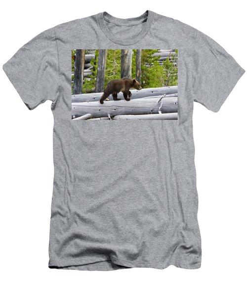 Grizzly Cub Men's T-Shirt (Athletic Fit)