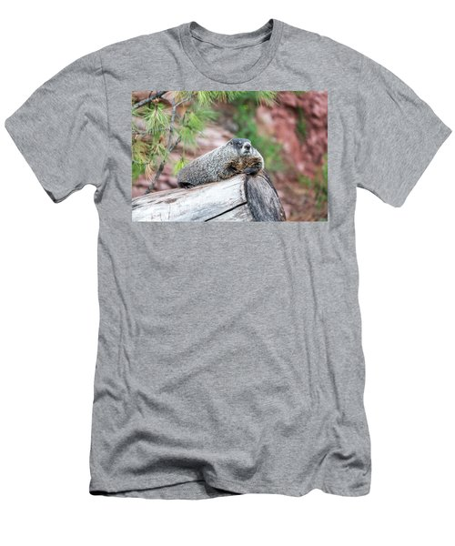 Groundhog On A Log Men's T-Shirt (Slim Fit) by Jess Kraft