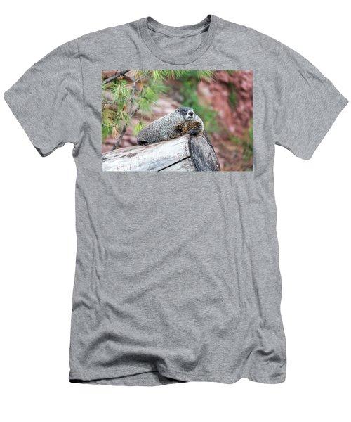 Groundhog On A Log Men's T-Shirt (Athletic Fit)