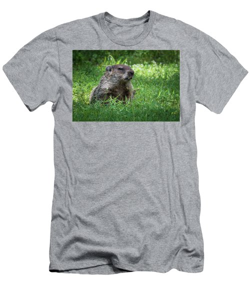 Groundhog Posing  Men's T-Shirt (Athletic Fit)