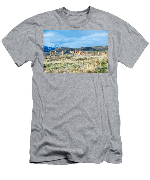 Guanaco In Patagonia Men's T-Shirt (Athletic Fit)