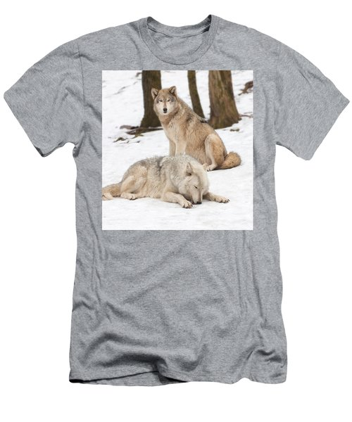 Guarding His Companion Men's T-Shirt (Slim Fit) by Gary Slawsky
