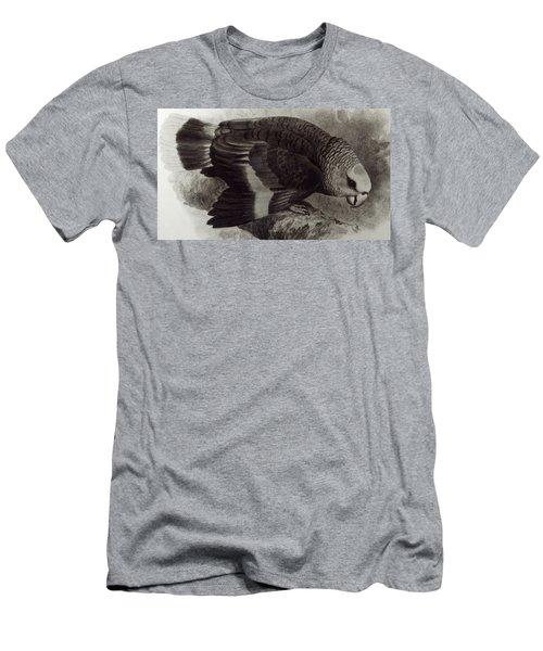 Guilding's Amazon Parrot,  Men's T-Shirt (Athletic Fit)