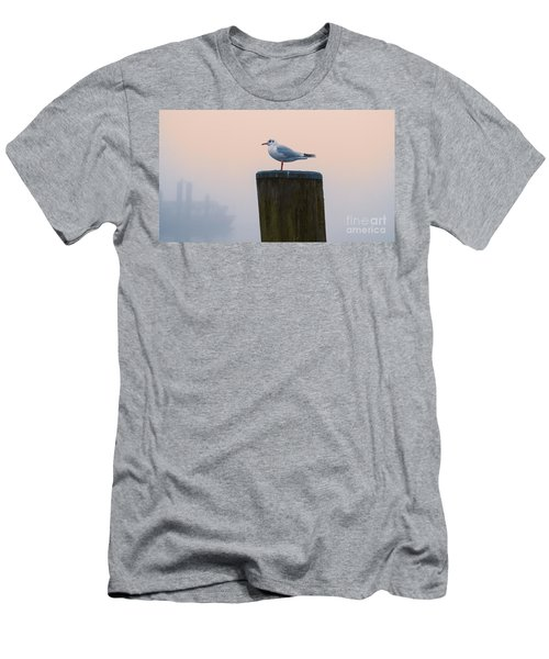 Gull And Fog Men's T-Shirt (Athletic Fit)