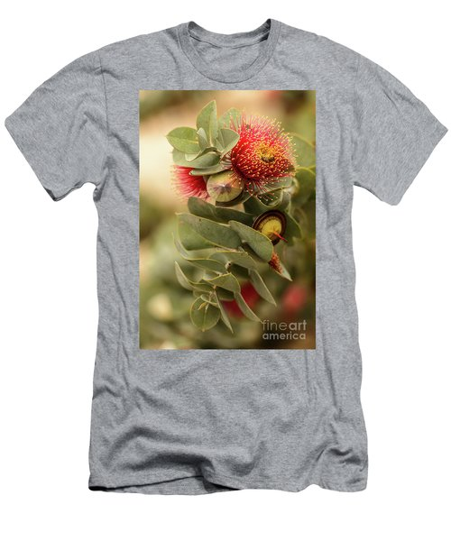 Gum Nuts Men's T-Shirt (Slim Fit) by Werner Padarin