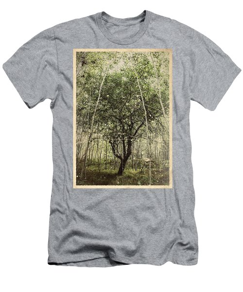 Hand Of God Apple Tree Poster Men's T-Shirt (Athletic Fit)