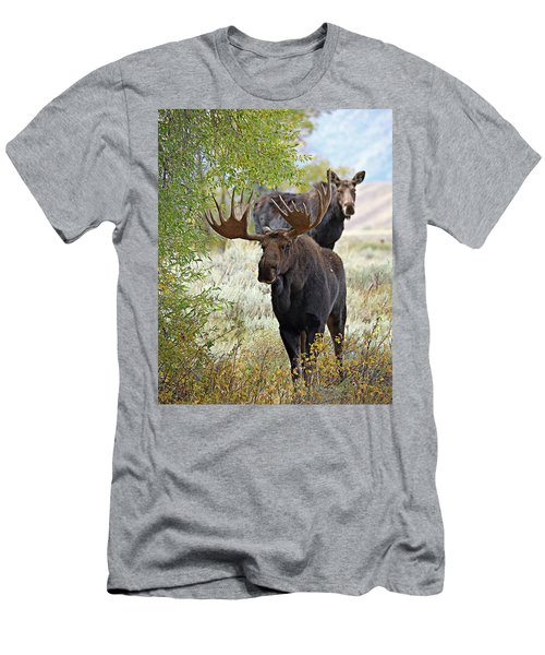 Handsome Bull With Cow Men's T-Shirt (Athletic Fit)