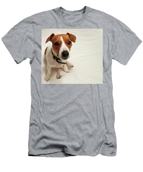 Happiness Is A Cute Puppy Men's T-Shirt (Athletic Fit)