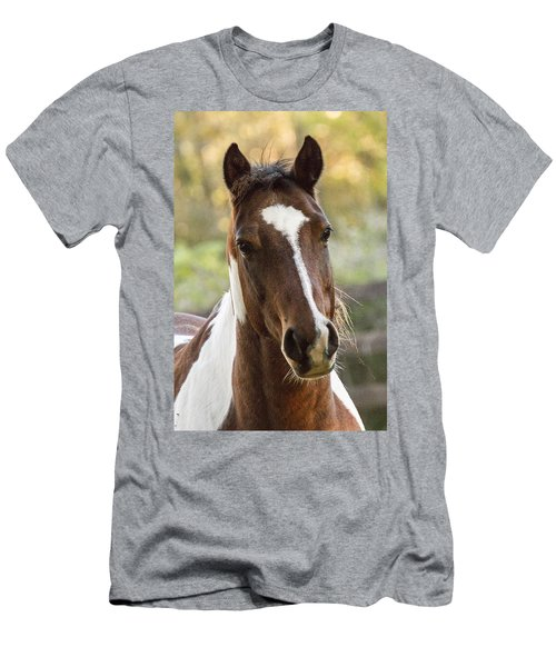 Happy Horse Men's T-Shirt (Athletic Fit)