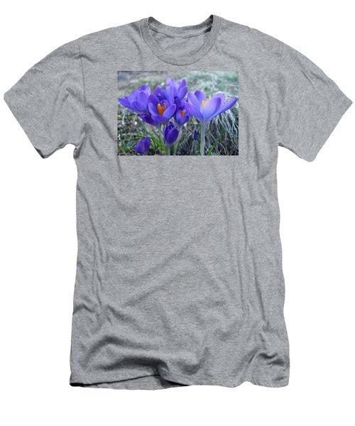 Harbinger Of Spring Men's T-Shirt (Slim Fit) by Barbara McDevitt