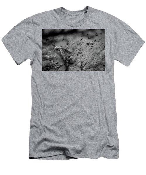 Harbor Seal Pup Monochrome  Men's T-Shirt (Athletic Fit)