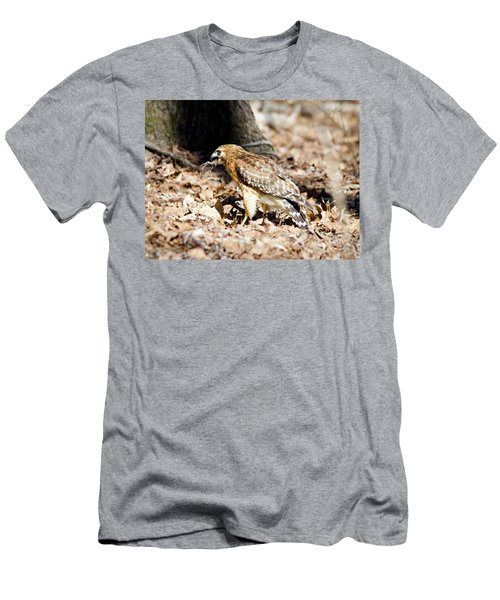 Hawk And Gecko Men's T-Shirt (Athletic Fit)
