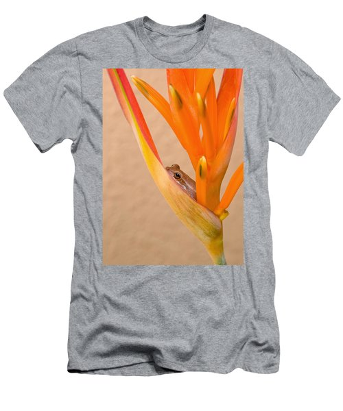 Heliconia And Frog Men's T-Shirt (Athletic Fit)