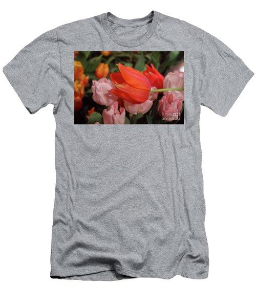 Hello Men's T-Shirt (Slim Fit) by Sandy Moulder