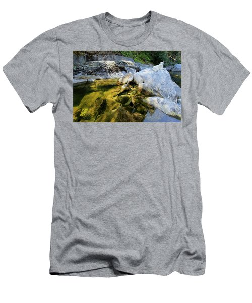 Men's T-Shirt (Athletic Fit) featuring the photograph Hello by Sean Sarsfield