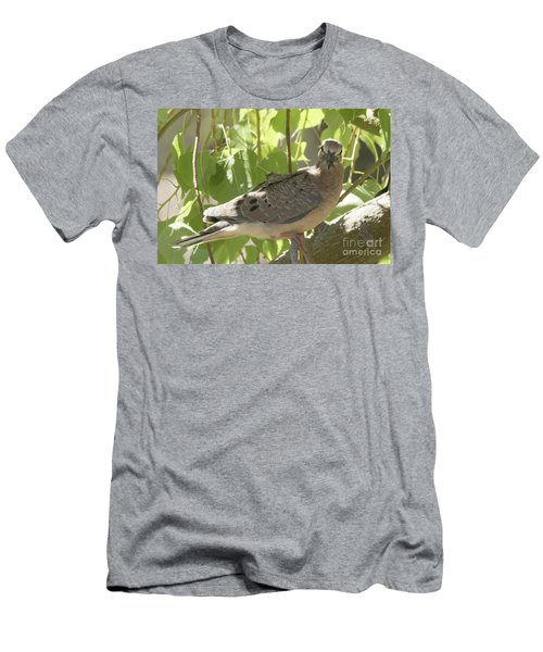 Here's Looking At You Babe Men's T-Shirt (Slim Fit) by Anne Rodkin