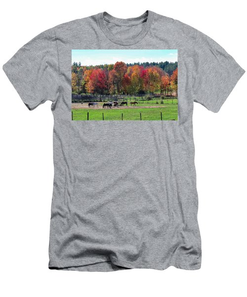 Heritage Farm In Easthampton, Ma Men's T-Shirt (Athletic Fit)