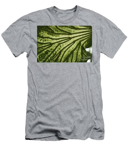 Hibiscus Tiliaceus Variegata 3 Men's T-Shirt (Athletic Fit)
