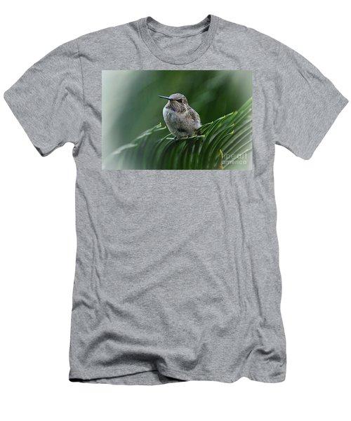 Hint Of Purple Men's T-Shirt (Athletic Fit)