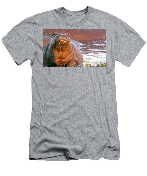 Hippo Snacks Men's T-Shirt (Athletic Fit)