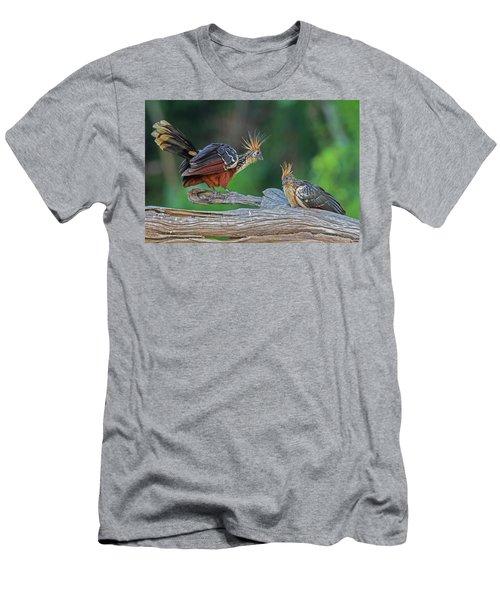 Hoatzins Men's T-Shirt (Athletic Fit)