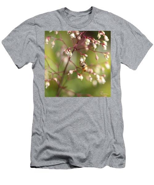 Honey Acrobat Men's T-Shirt (Athletic Fit)