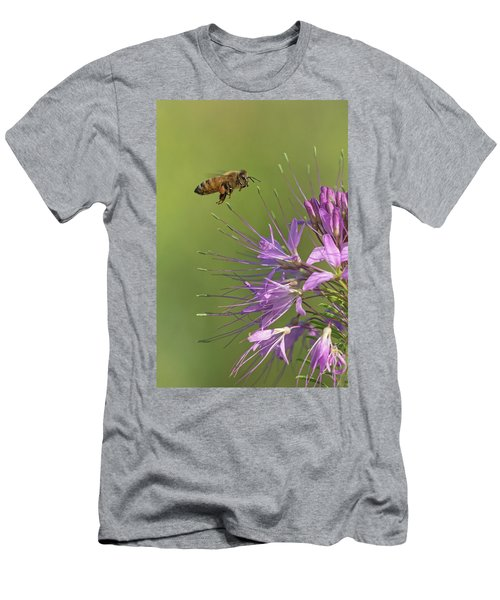 Honey Bee At Work Men's T-Shirt (Athletic Fit)