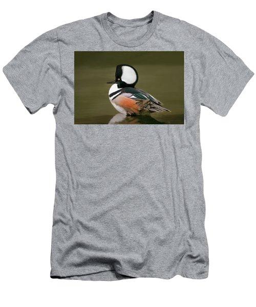 Hooded Merganser Men's T-Shirt (Athletic Fit)