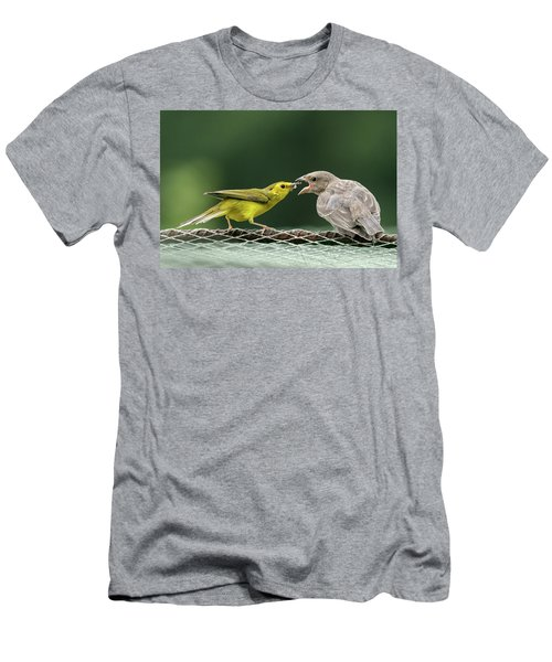 Hooded Warbler Feeding Cowbird Men's T-Shirt (Athletic Fit)